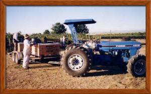 Harvest 2001