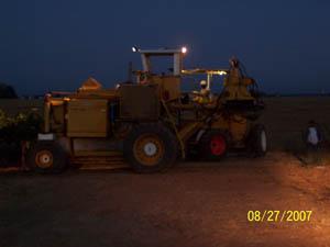 Harvest 2007 004