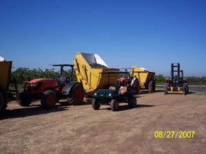 Harvest 2007 005